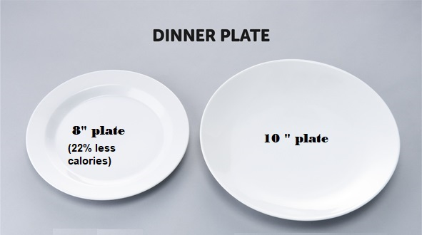 DinnerPlateSize